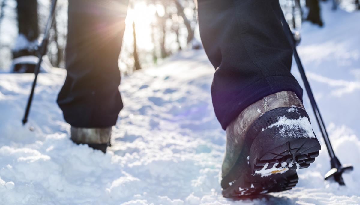 Cammini in Inverno